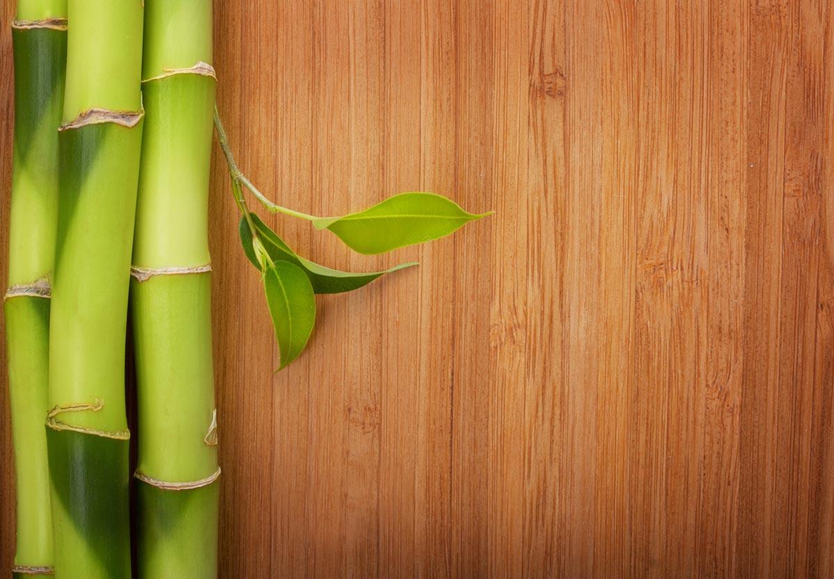 Philadelphia Bamboo Floor