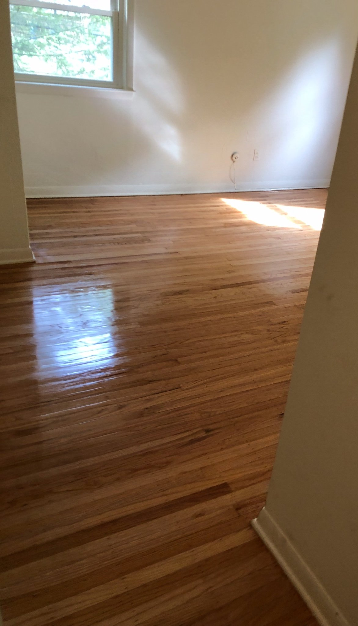 Refinished Hardwood Floors Blue Bell
